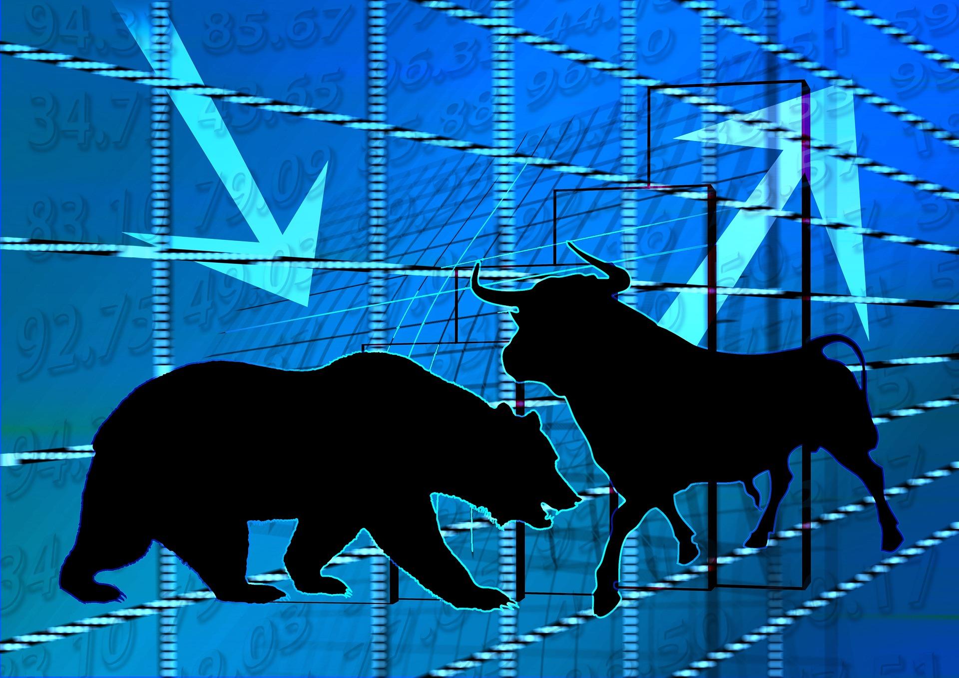 O que é bull run e bear market